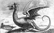 Drago Cornelius Meyer 2