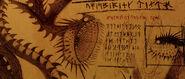 Flüsternder Tod Buch der Drachen