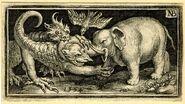 Plinius Elefant 2