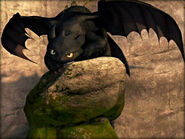 -Toothless-how-to-train-your-dragon-33059192-800-600