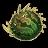 AvB Melonenwild Ei