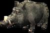 SoD Tier Wildschwein