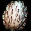 Großer Überwilder Ei Serie - NBG
