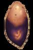 AvB Außenseiter Stichling Ei