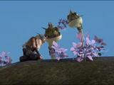 Darla-Pflanze