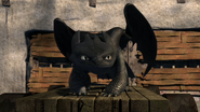Toothless(12)