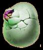 Eierbeißer Exotisch - NBG