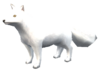 SoD Tier Polarfuchs