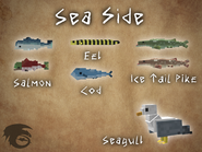 Sea Side Showcase