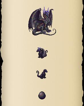 Black Truffle Dragon