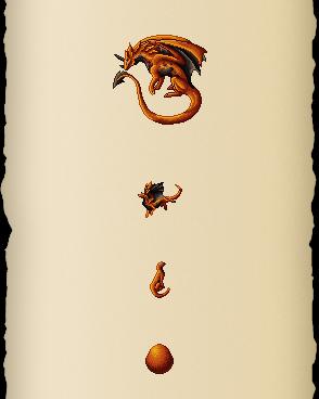 Cassare Dragon