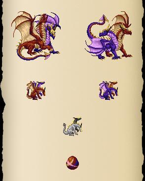Duotone Dragon