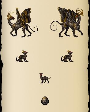 Caligene Dragon