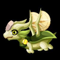 Sightseer Dragon