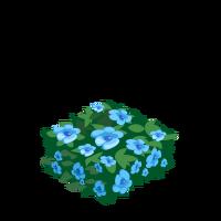 Blue Hedge.png