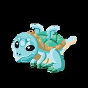Turtle Juvenile.png