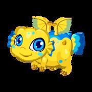 Puffer Juvenile.png