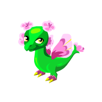 Pansy Dragon