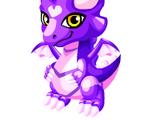 Silky Dragon