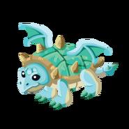 Turtle Adult