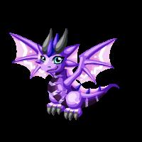 Pointrie Dragon