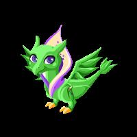 Lily Dragon