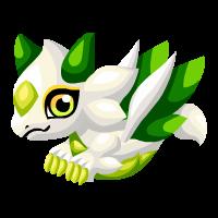 White Lotus Dragon
