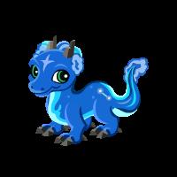 Aquarius Dragon