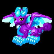 Mysticaster Juvenile.png