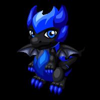 Elusive Dragon