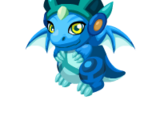 Raindance Dragon