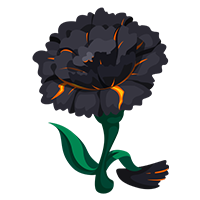 Cinder Carnation