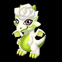 Whitebloom Dragon