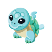 Turtle Baby.png