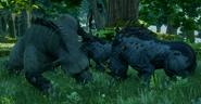 Bearfightingbronto