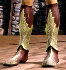 Древние эльфийские ботинки