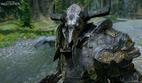 Железный Бык в шлеме