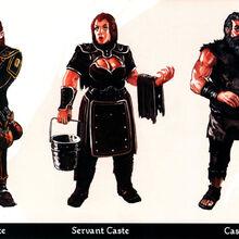Castes 2.jpg