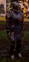 Warden Warrior Inquisition