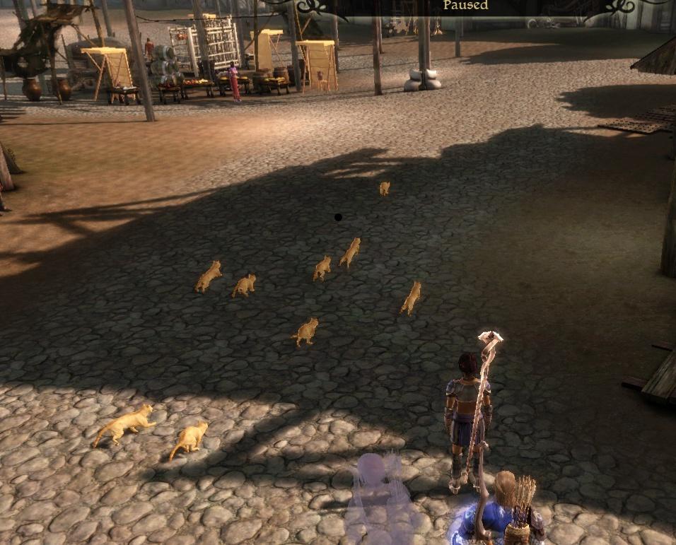 Cat-herd.jpg