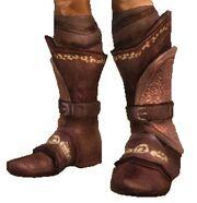 Кольчужные ботинки.jpg