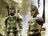 Комплект древних эльфийских доспехов