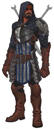 Grey warden rogue