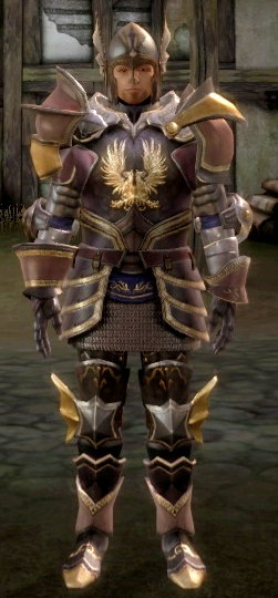 Warden Commander armor set