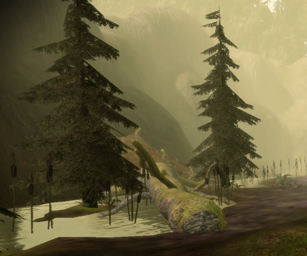 West Brecilian Forest