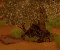 Deathroot (Inquisition)