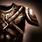 Ico armor light.png
