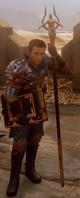 Grey Warden SpellBinder