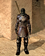 Seeker of Truth Armour Set