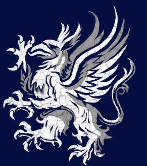 Большой щит Серого Стража